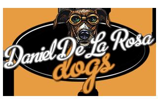 DDLRD-Logo